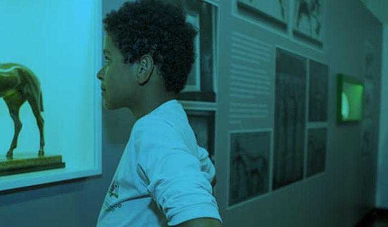 Um menino veste camisa branca e observa a escultura de um cavalo, de tamanho pequeno, exposta em uma exposição
