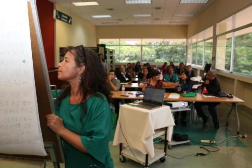 O programa Iberbibliotecas, parceiro na realização das oficinas, também organizou seminário sobre bibliotecas acessíveis no país